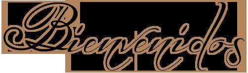 INGRESANTES PRIMARIA 2017, colegios parroquiales lima, colegios particulares en el callao, colegios parroquiales en el callao, centros educativos en el callao, instituciones educativas en lima, colegios catolicos en lima